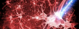 Εκπαιδεύστε τον εγκέφαλό σας ώστε να απαλλαχθείτε από συνήθειες – 10 μέθοδοι για να δημιουργήσετε νέες νευρικές οδούς