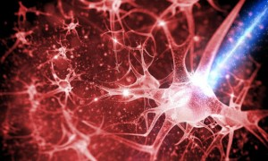 methods-for-creating-new-neural-pathways-