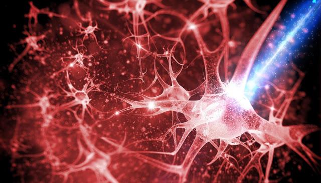 Ανεπιφύλακτα  - Σελίδα 14 Methods-for-creating-new-neural-pathways-