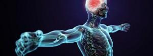 7 παραδείγματα που δείχνουν πώς τα συναισθήματα επηρεάζουν το ανθρώπινο σώμα