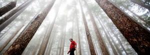 Περπάτημα για βελτίωση πνευματικών ικανοτήτων και ψυχικής υγείας
