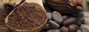 Κακάο: η τροφή των θεών