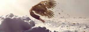 Εμπιστεύσου τα φτερά σου κι απέδρασε από τη φυλακή σου