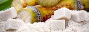 Καταπληκτικό βίντεο που δείχνει πώς η ζάχαρη καταστρέφει τον οργανισμό (Βίντεο)