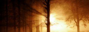 5 βήματα για να βρείτε το δρόμο σας μέσα από το σκοτάδι