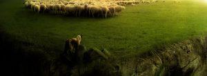 Ο Μάγος και τα Πρόβατα