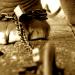 «O αλυσοδεμένος ελέφαντας του Χόρχε Μπουκάι» –  Ιστορία με νόημα
