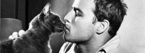 Sigmund Freud: Ο χρόνος που περνάς με τις γάτες δεν πάει ποτέ χαμένος