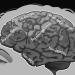 Οι γιατροί εξηγούν γιατί οι αρνητικές σκέψεις κάνουν κακό στην υγεία μας.