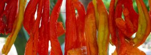 Η κατανάλωση καυτερής πιπεριάς μειώνει τους θανάτους από έμφραγμα και εγκεφαλικό.