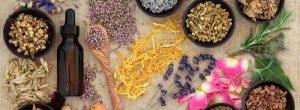 Τα βότανα που καταπολεμούν το άγχος