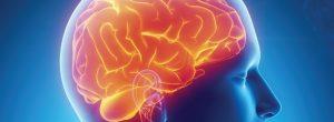 5 τρόφιμα που προκαλούν βλάβες στον εγκέφαλο σας!