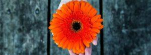 To 2018 μια πορτοκαλί χρονιά με τη δόνηση της αφθονίας, της αρμονίας και της χαράς