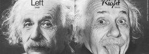 Εγκέφαλος: Σε ποιο ημισφαίριο του ζεις;