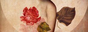 Οι νοητικές αιτίες των ασθενειών και το πρότυπο σκέψης για την θεραπεία, από την  Louise Hay