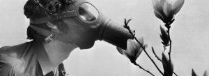 Πως οι έξυπνοι άνθρωποι διαχειρίζονται τους τοξικούς ανθρώπους