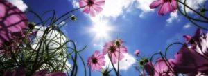 Οδυσσέας Ελύτης: Την Άνοιξη αν δεν τη βρεις, τη φτιάχνεις…
