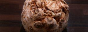 Σελινόριζα: Η «άσχημη» αντικαρκινική υπερτροφή που αξίζει την προσοχή μας!