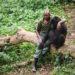 Ο δασοφύλακας ενός πάρκου παρηγορεί έναν θλιμμένο γορίλα που μόλις έχασε τη μητέρα του