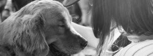 Είναι επίσημο: οι άνθρωποι αγαπούν περισσότερο τους σκύλους παρά τους ανθρώπους