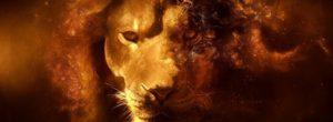 Πώς τα ζώδια εκφράζουν τον θυμό τους και ποια πρέπει να προσέχετε