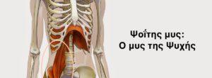 Ψοΐτης μυς: Ο μυς της Ψυχής