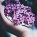 Λάο Τσε: «Πρόσεξε τη συμπεριφορά σου, γίνεται το πεπρωμένο σου…»