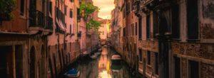 Αισιόδοξες εικόνες: ψάρια στα κανάλια της Βενετίας