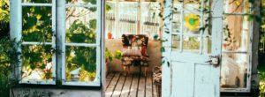 Φυτά που φιλτράρουν τον αέρα του σπιτιού μας