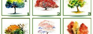 Επιλέξτε το αγαπημένο σας δέντρο και δείτε τι αποκαλύπτει για την προσωπικότητά σας